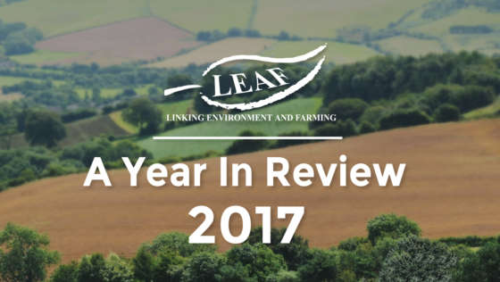 LEAF 2017 Annual Report