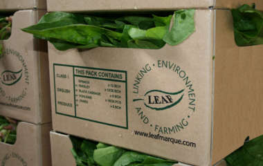 LEAF Marque Benchmarked as Gold Against the SAI Platform Farmer Self Assessment