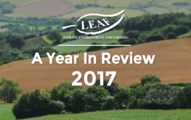 LEAF: A Year in Review 2017