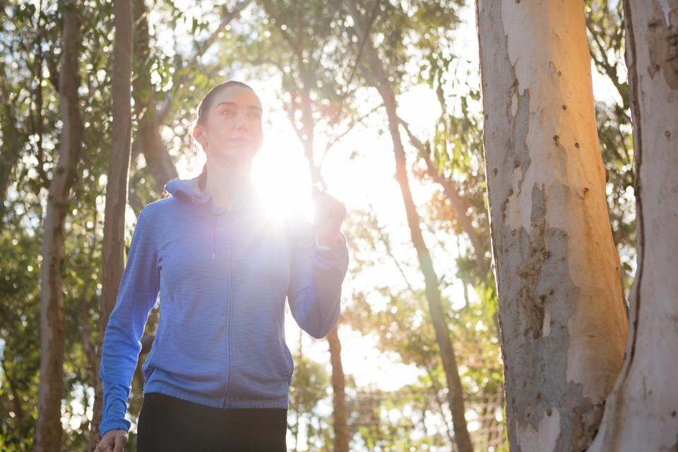 """Woman jogging in forest"" stock image"