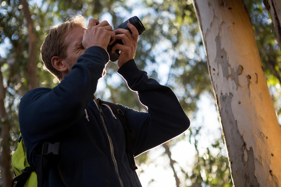 """Man using dslr camera in the forest"" stock image"