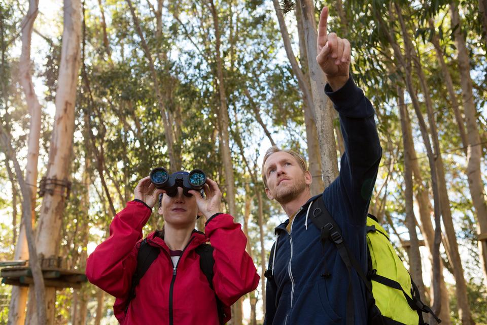 """""""Man pointing out while woman using binoculars"""" stock image"""