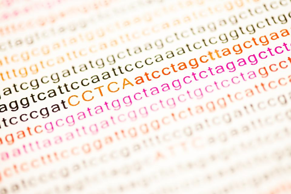 """List of dna analysis letters"" stock image"
