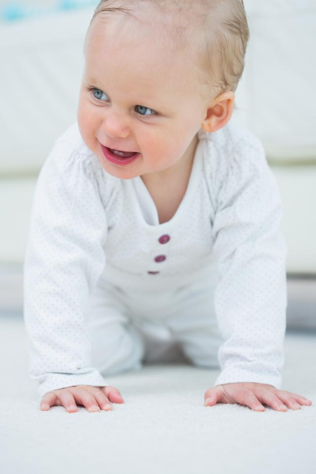 """""""Baby walking on all fours"""" stock image"""