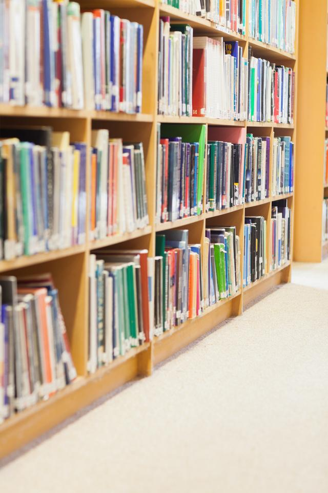 """Bookshelf at the library"" stock image"