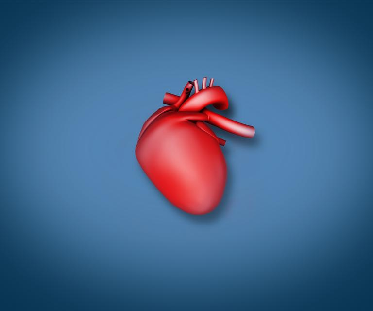 """Diagram of a heart"" stock image"