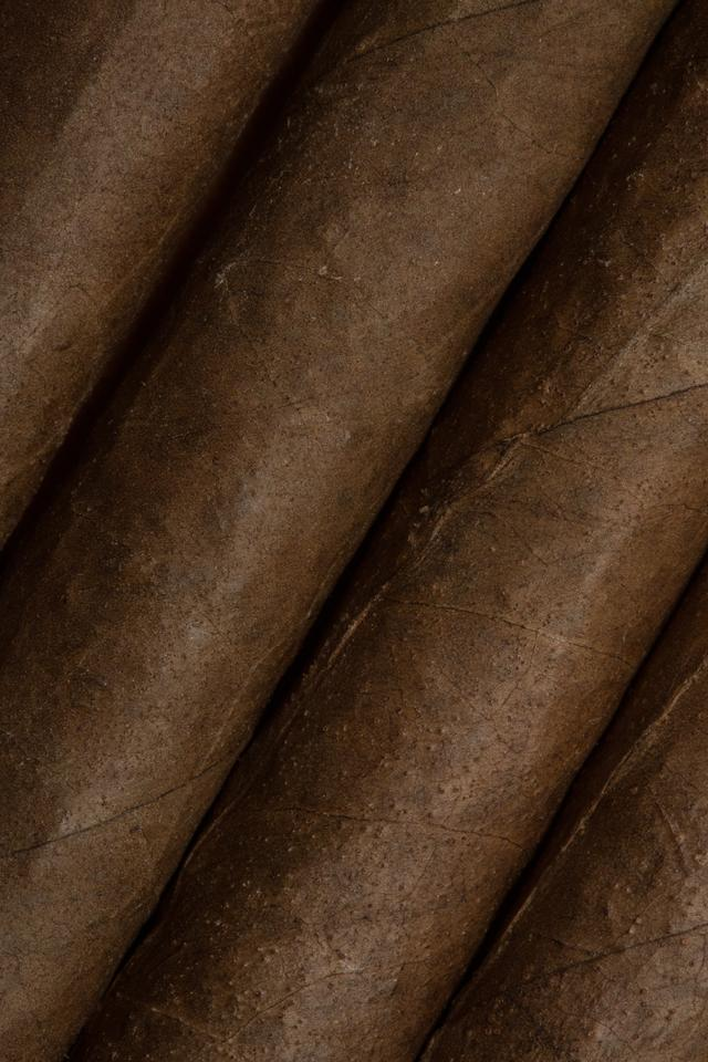 """""""Close up of cigars"""" stock image"""