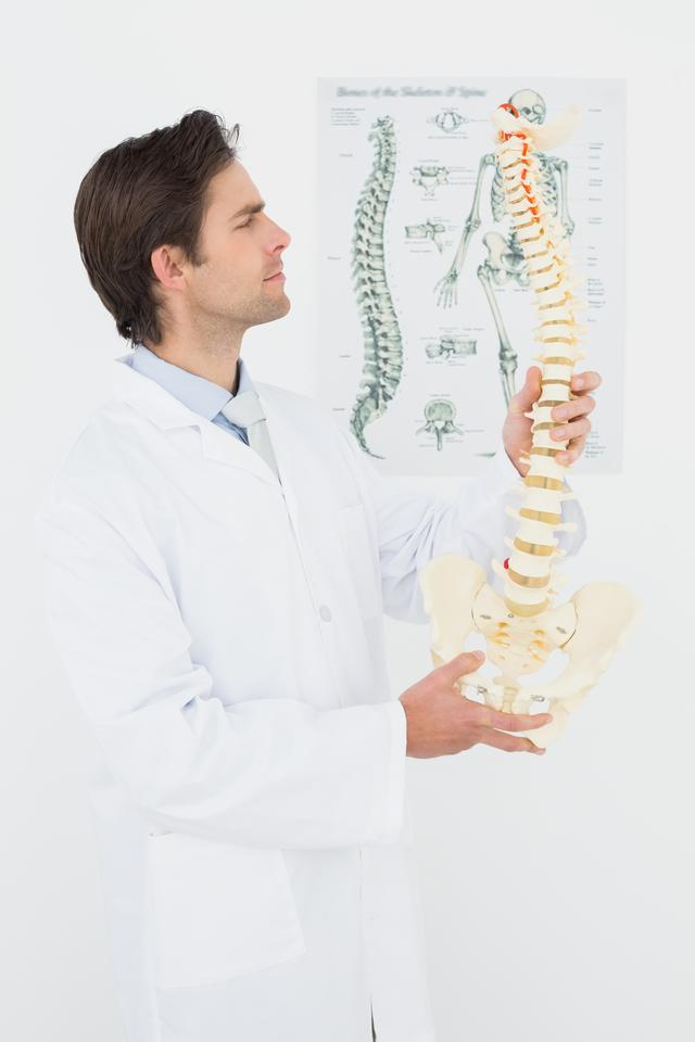 """Serious male doctor looking at skeleton model"" stock image"