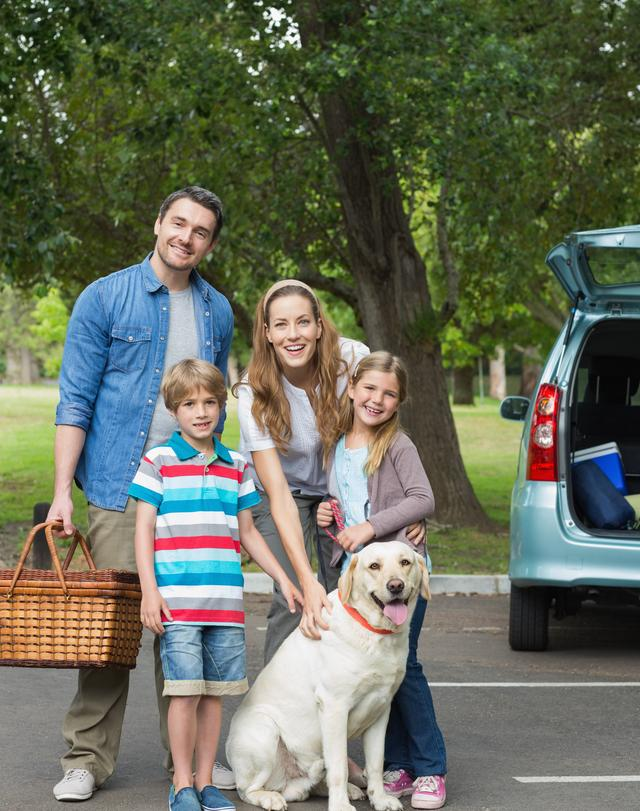 """""""Family with two kids at picnic"""" stock image"""