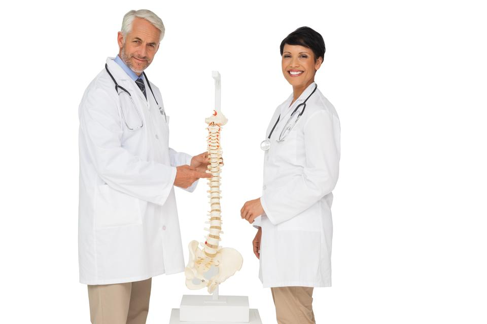 """Portrait of two smiling doctors with skeleton model"" stock image"