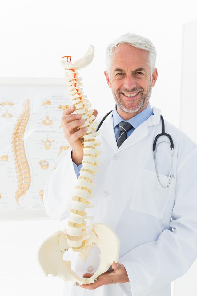 """Confident mature male doctor holding skeleton model"" stock image"