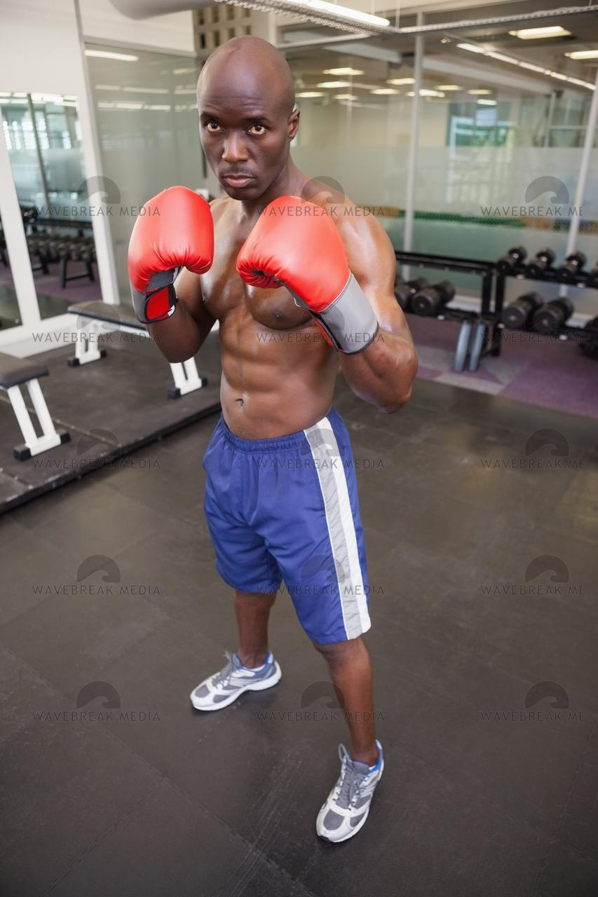 Muscular boxer in defensive stance in health club - License