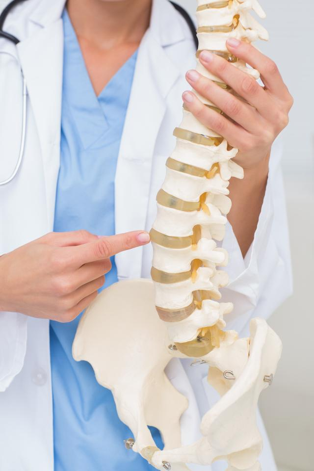 """Female doctor with anatomical spine"" stock image"