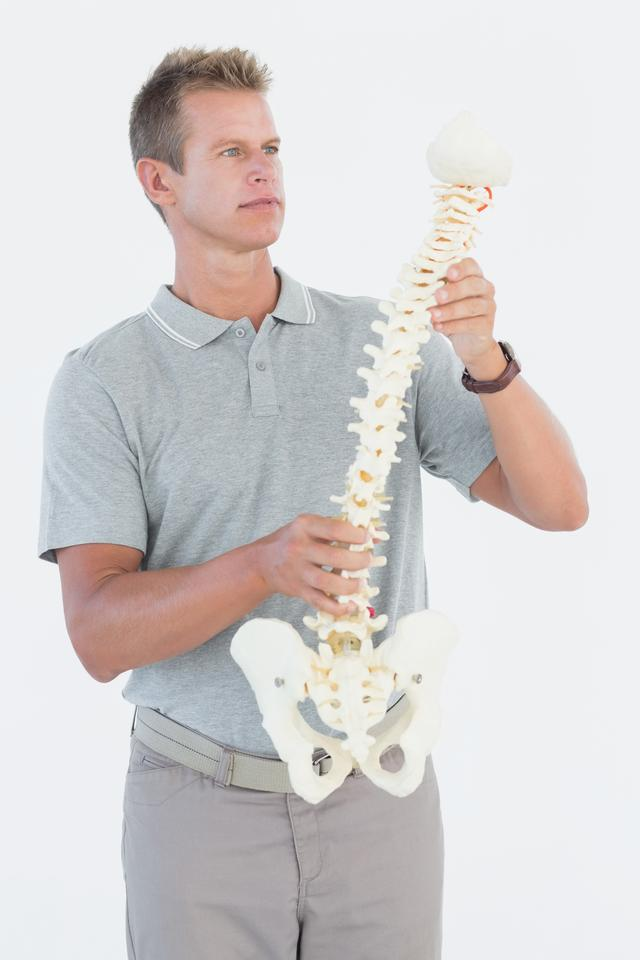 """Doctor with anatomical spine"" stock image"