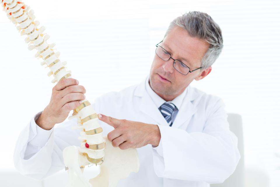 """""""Doctor pointing anatomical spine"""" stock image"""