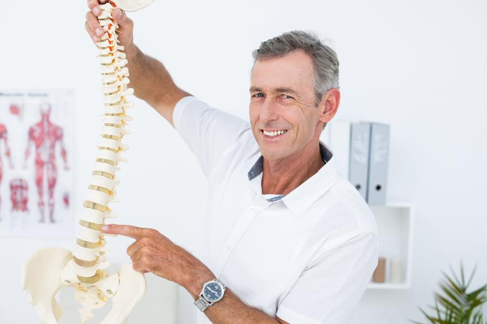 """""""Smiling doctor showing anatomical spine"""" stock image"""