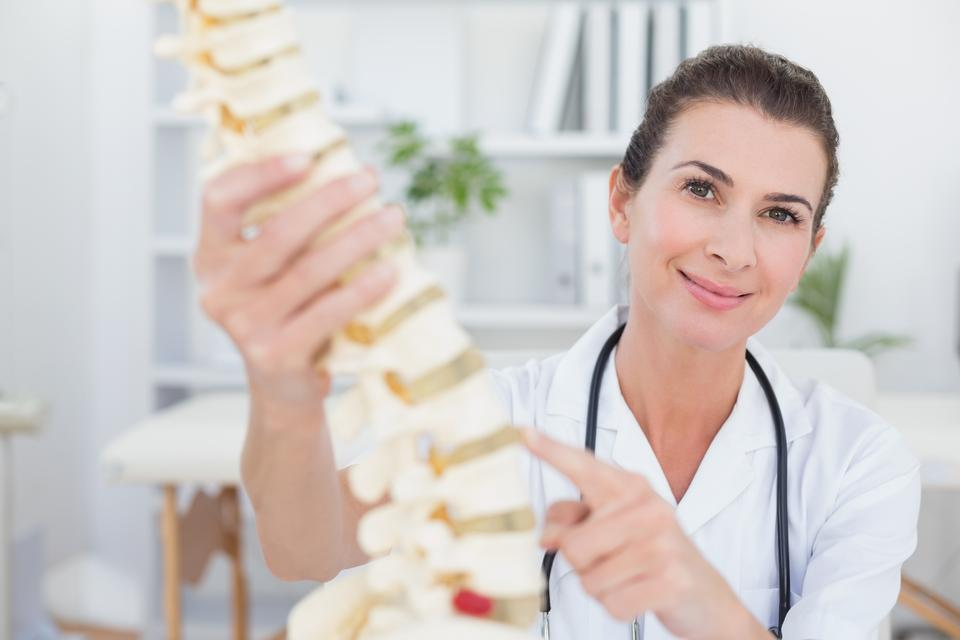 """Happy doctor showing anatomical spine"" stock image"