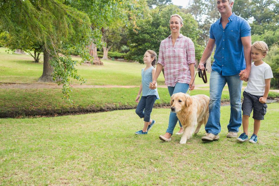 """""""Happy family in the park with their dog"""" stock image"""