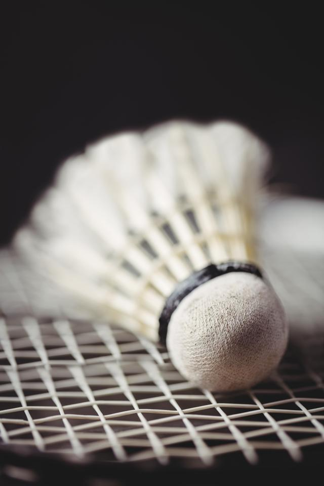 """Close up of shuttlecock and badminton racket"" stock image"