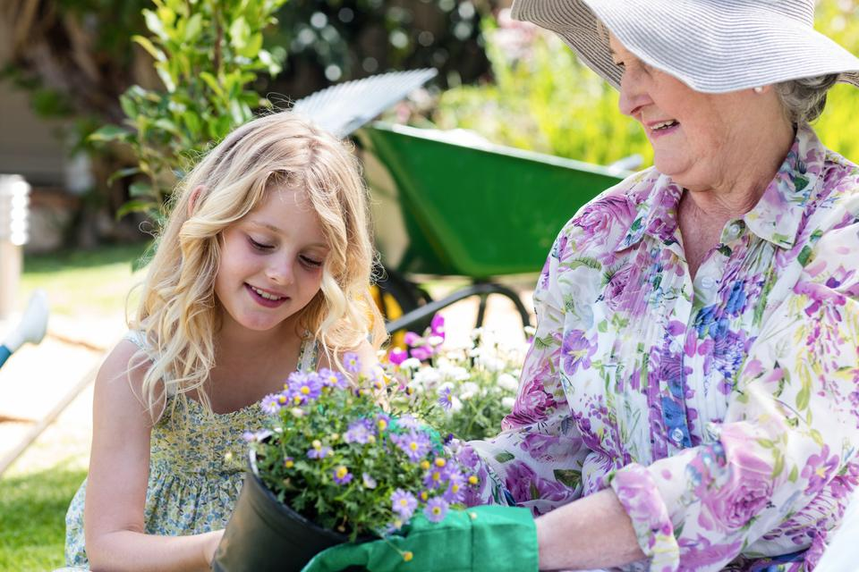 """Grandmother and granddaughter holding a flower pot"" stock image"