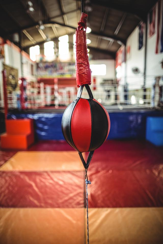 """""""Speed boxing ball in fitness studio"""" stock image"""