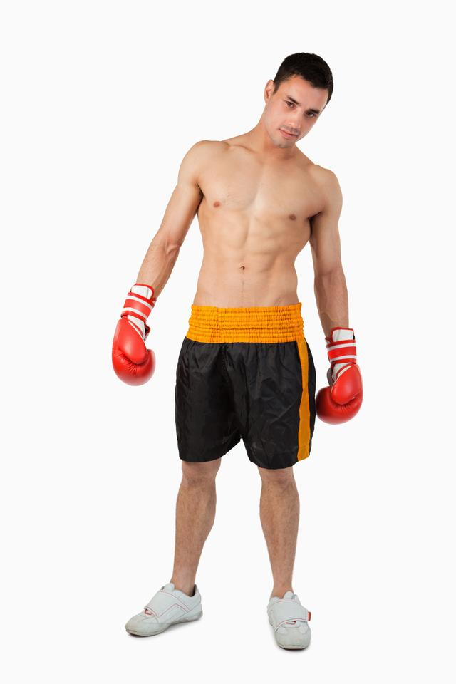 """Young boxer"" stock image"