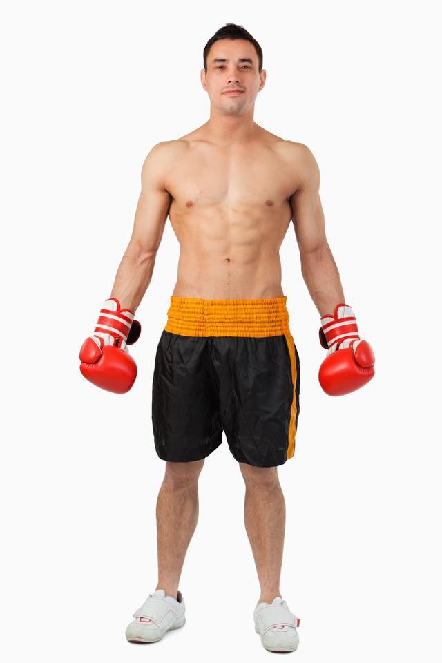 """""""Young boxer looking confident"""" stock image"""