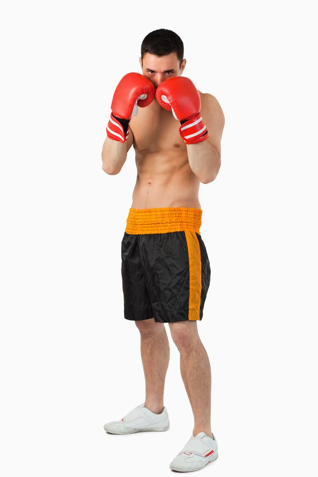 """""""Young boxer taking cover"""" stock image"""