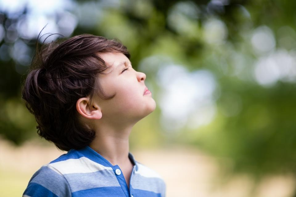 """Boy looking up in park"" stock image"