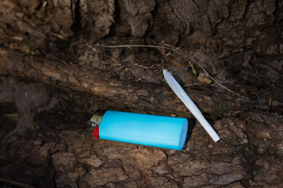 """""""Lighter and cigarette on tree trunk"""" stock image"""