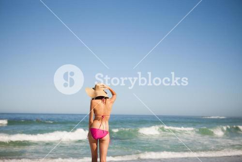 Back view of a young woman in beachwear standing in front of the sea