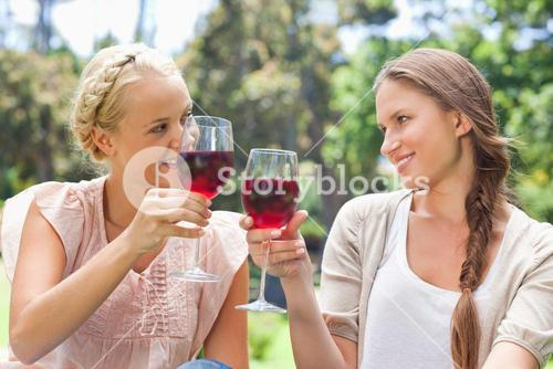 Friends clinking their wine glasses