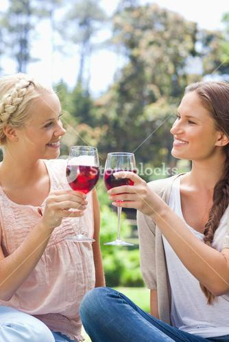 Smiling friends clinking their wine glasses