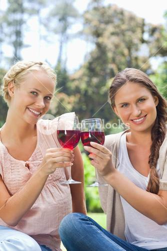 Smiling friends clinking wine glasses