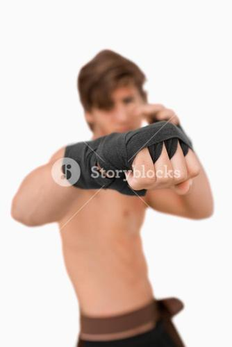 Martial arts fighters fist