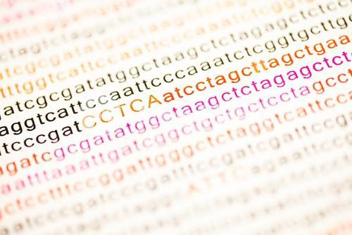 List of dna analysis letters