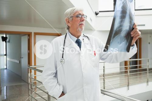 Doctor standing in the corridor looking at a xray