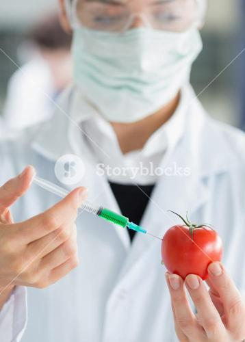 Woman injecting a tomato