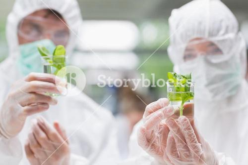 Two students standing at the laboratory holding beakers with seedlings