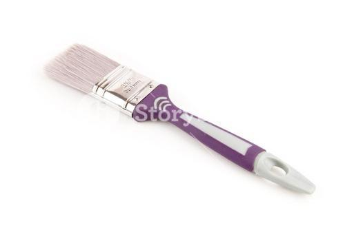 Purple paintbrush