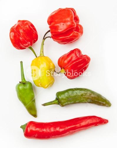 Various chillies