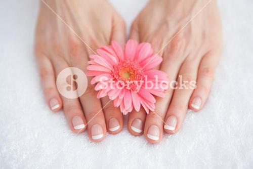 Flower on french manicured fingers at spa center