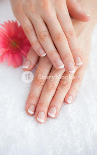 Flower with french manicured fingers at spa center