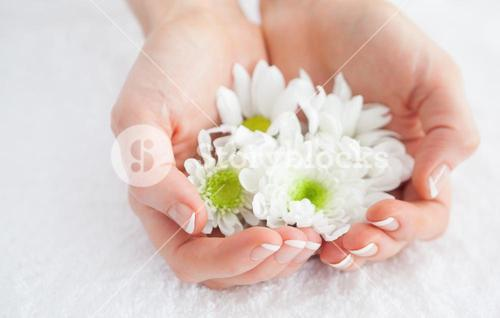 French manicured hands holding flowers