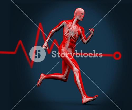 Digital body running against a heart rate line