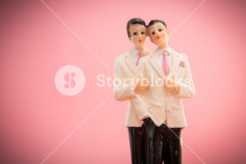 Gay groom cake toppers