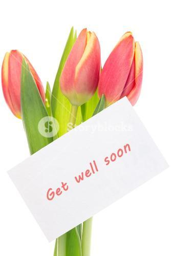 Pink and yellow tulips with get well soon greeting