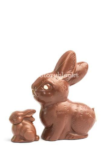 Big and small chocolate bunny rabbits