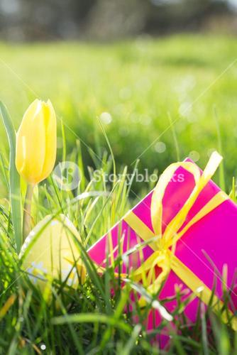 Pink gift box with yellow easter egg and tulip