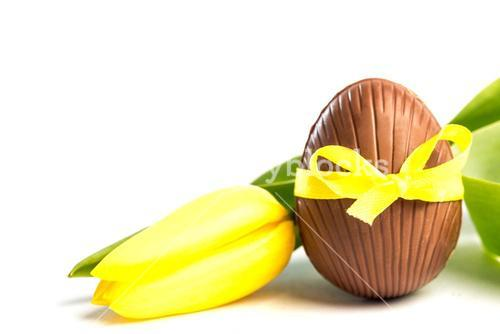 Chocolate easter egg in a yellow ribbon with tulip